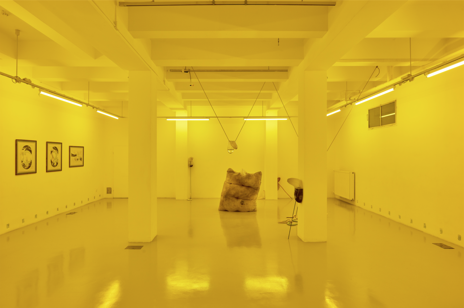 Image credit: Installation view, Some people believe the Sun used to be yellow, curated by Borbála Soós, Dec 2018/Jan 2019, Trafó House of Contemporary Arts, Budapest, Hungary