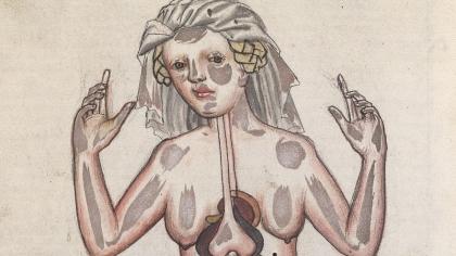 medical-illustration.jpg